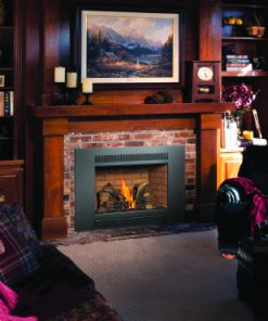 Design Your Fire Design Ideas Videos 33 DVI Gas Fireplace Insert