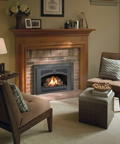 32 DVS Gas Fireplace Insert