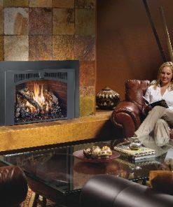 616 Gas Fireplace Insert