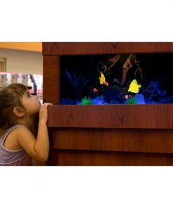 Dimplex Opti-V Built-in Aquarium