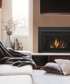 Provident Gas Fireplace Insert