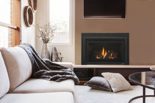Heat & Glo Provident Gas Fireplace Insert